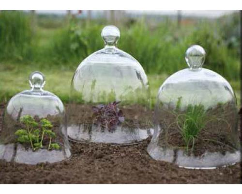 Bell-Cloches